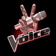 The Voice 3 : une finale masculine, Twitter et les stars en colère
