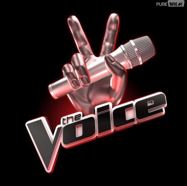 The Voice : le casting final fait polémique