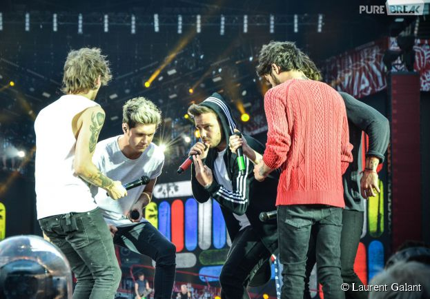 Les One Direction en concert au Stade de France, le 20 juin 2014