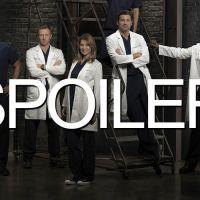 Grey's Anatomy saison 11 : une année centrée sur...
