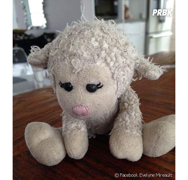 Doudou, la peluche d'une petite fille retrouvée grâce à Facebook