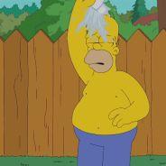Les Simpson : Homer Simpson et son Ice Bucket Challenge délirant