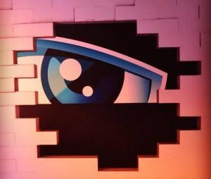 Secret Story : quel animateur pour une éventuelle saison 9 ?
