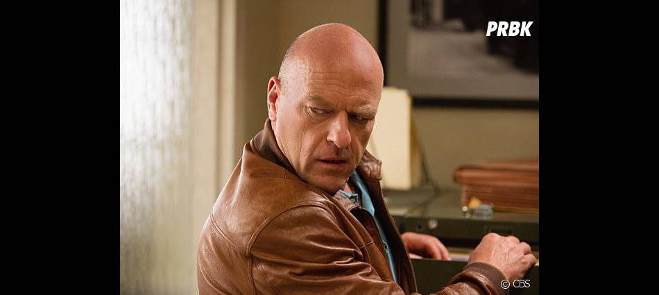 Under the Dome : Dean Norris sur une photo