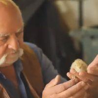 L'amour est dans le pré 2015 : les agriculteurs se dévoilent dans les premières images