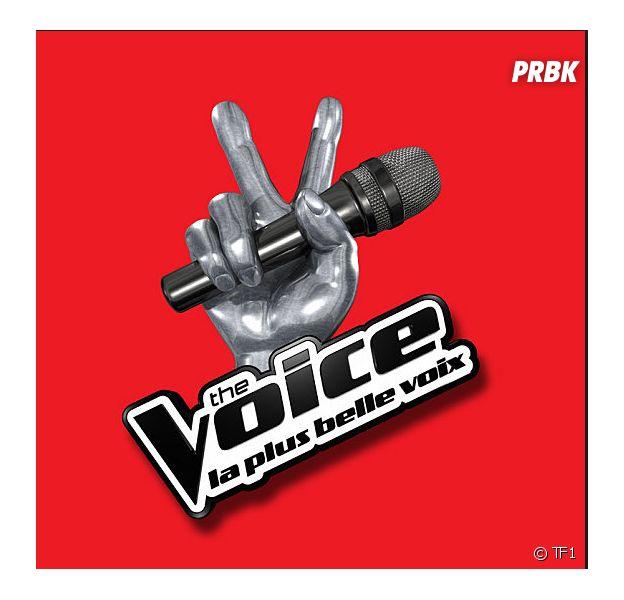 The Voice 4 : l'année des changements pour l'émission de TF1