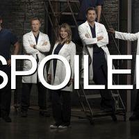 Grey's Anatomy saison 11 : un couple improbable et une aventure à venir ?