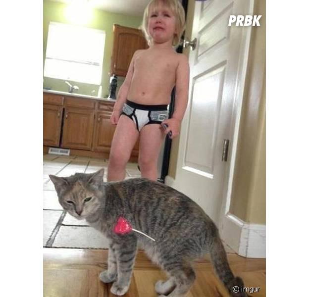 Un enfant apprend qu'on ne joue avec sa sucette et son chat en même temps
