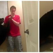 Un chien réconforte sa maîtresse autiste en pleine crise d'angoisse : une vidéo pleine d'émotion