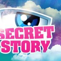 Secret Story 9 : la Voix révèle 10 indices sur la Maison des Secrets !