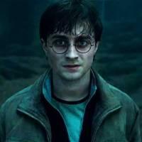 Harry Potter : découvrez dans quelle maison son fils a été admis à Poudlard