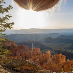 Nutscaping : la nouvelle tendance improbable et WTF des photos de paysages