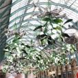 EnjoyPhoenix joue les touristes à Covent Garden à Londres