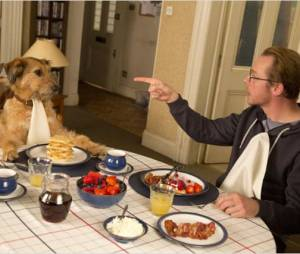Absolutely Anything est actuellement disponible en DVD et Bluray