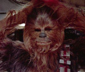 Après le buzz du masque Chewbacca, une maman accouche... avec le masque sur la tête !