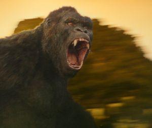 Kong Skull Island : un film de monstres