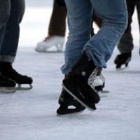 Championnats du monde de patinage artistique (Turin, 22-28 mars 2010 )... présentation