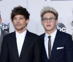 Niall Horan et Louis Tomlinson se clashent avec humour sur Twitter