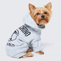 Moschino x H&M : la collab qui fera même craquer votre chien 🐶
