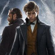 Les Animaux Fantastiques 2 : apparition secrète d'un personnage culte d'Harry Potter ?