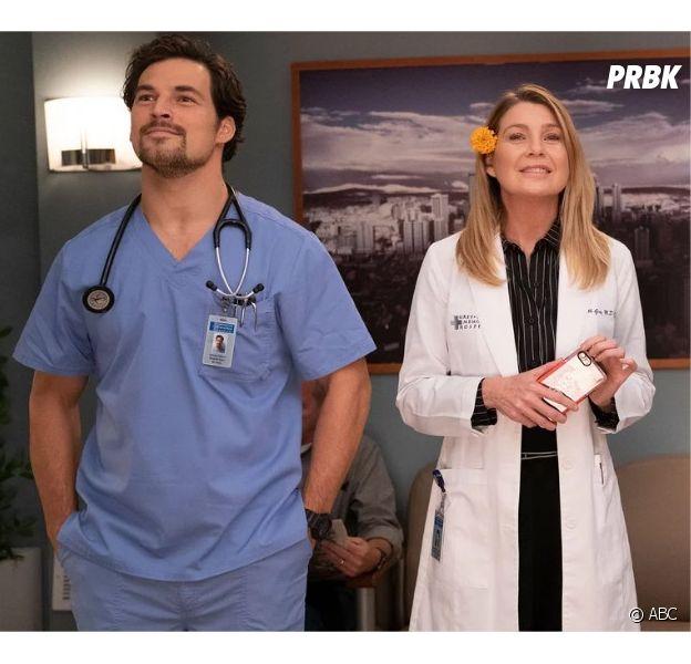 Grey's Anatomy saison 12 : Meredith et DeLuca en couple ? Les fans auront un rôle à jouer