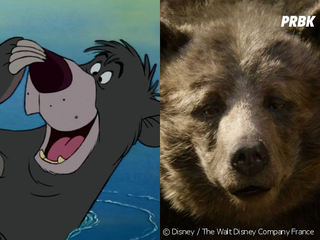 Le livre de la jungle : Baloo dans le dessin-animé VS dans le film