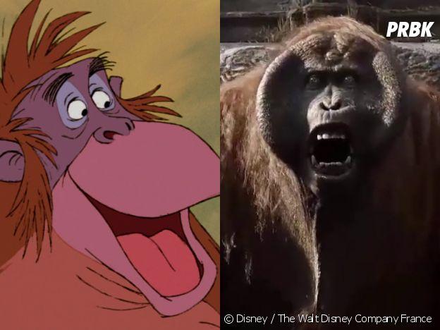 Le livre de la jungle : le Roi Louie dans le dessin-animé VS dans le film