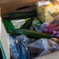 Journée contre le gaspillage alimentaire : 5 chiffres inquiétants et quelques solutions faciles