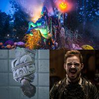 Halloween 2019 : notre sélection des meilleurs endroits pour se donner des frissons