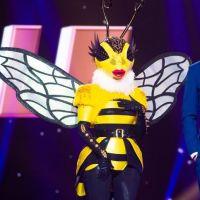 Mask Singer : quelles célébrités se cachent sous les masques ? Les théories des internautes