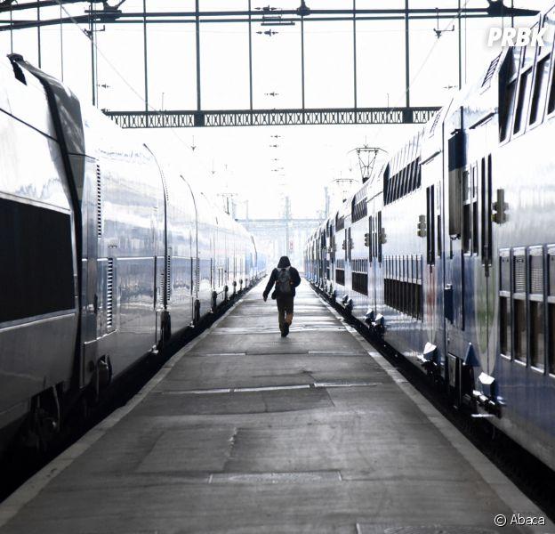 Grèves 2019 : une femme accouche dans le RER D