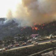 Incendies en Australie : de Nabilla à Pink, Selena Gomez ou Nicole Kidman, les stars se mobilisent