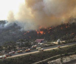 Incendies en Australie : Pink, Nicole Kidman, Nabilla... les stars se mobilisent