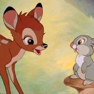 Bambi : un film français (non lié à Disney) avec de vrais animaux en préparation