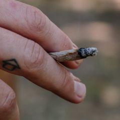 """Le cannabis n'est plus une drogue dangereuse selon l'ONU qui reconnaît son """"utilité médicale"""""""