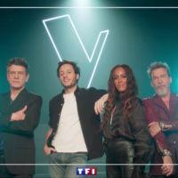 The Voice 10 : Vianney, Amel Bent... les salaires impressionnants des coachs dévoilés