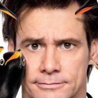 Mr Popper et ses pingouins avec Jim Carrey ... la bande annonce en VF (vidéo)