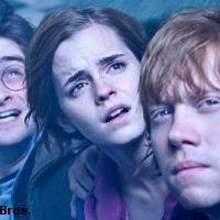 Harry Potter et les Reliques de la Mort partie 2 ... le jeu La Quête continue