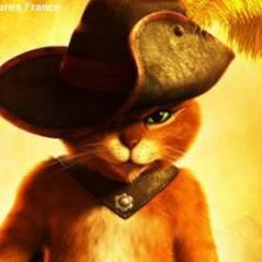 Le Chat Potté : toutes griffes dehors avec la bande annonce VF (VIDEO)