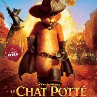 Le Chat Potté : une nouvelle bande annonce qui va dépoter