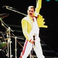 Freddie Mercury : 20 ans après, tous fans de lui
