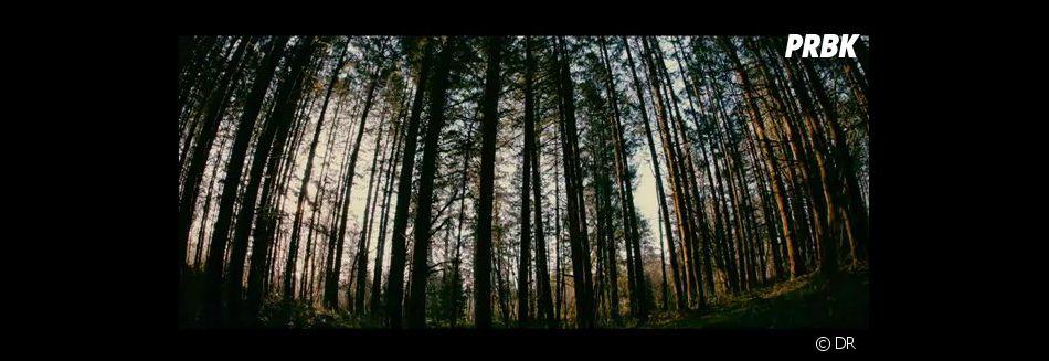 House at the end of the street : peur dans la forêt