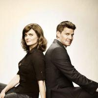 Bones saison 8 : Booth et Brennan rempilent pour une saison !