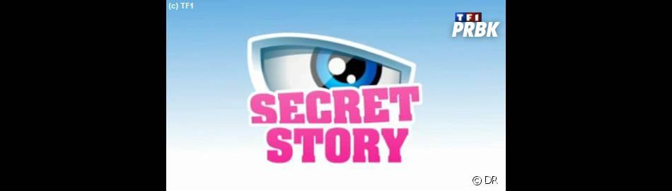Secret Story : c'est bientôt reparti !