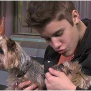 Justin Bieber prêt à tout pour exploser les compteurs Youtube : bébés, chiots, choré  LMFAO ! (VIDEO)