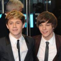 One Direction : bientôt sur grand écran et en 3D comme Justin Bieber !