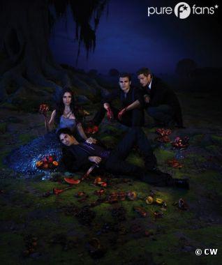 Il n'y a pas qu'Elena dans Vampire Diaries !