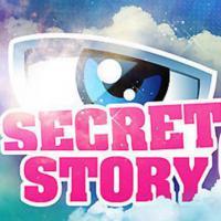 Secret Story 6 : Audiences en baisse ? WTF ! L'émission cartonne sur les réseaux sociaux !