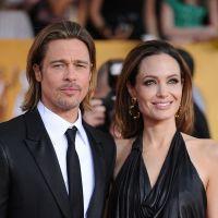 Angelina Jolie et Brad Pitt : leur vin bio s'écoule en quelques heures