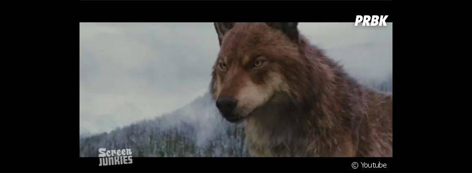 """Honest Trailer de Twilight 5 : des loups-garous """"so british"""""""